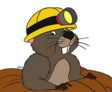 Cable Gopher logo